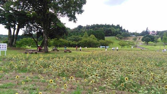 Kagoshima Agriculture Center