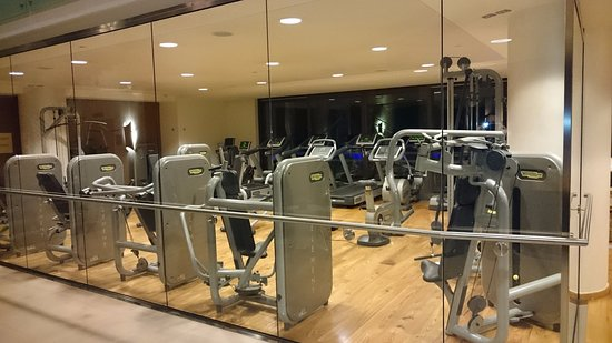 Lefay Resort & Spa Lago di Garda: Hotel Gym.