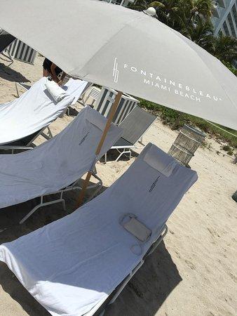 Fontainebleau Miami Beach: La plage
