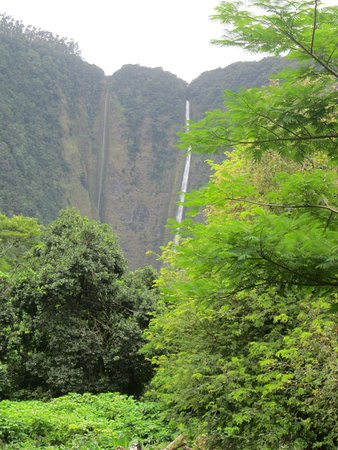 Kukuihaele, HI: the falls inside the valley