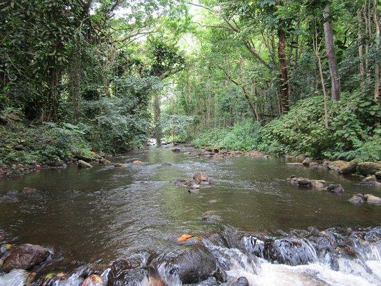 Kukuihaele, HI: water way we traveled through in the shuttle
