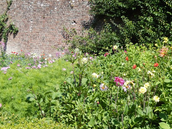 Aberaeron, UK: The walled garden.