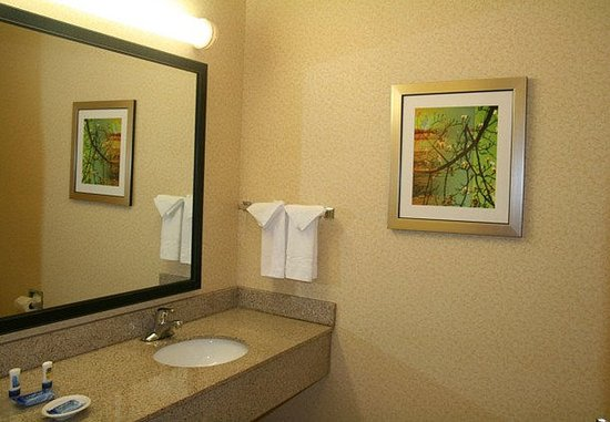 Fultondale, AL: Suite Bathroom