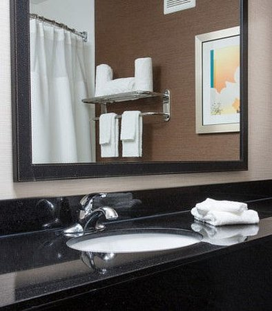 แตร์โอต์, อินเดียน่า: Suite Bathroom