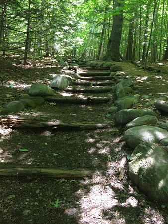 Holderness, NH: Well maintained trails