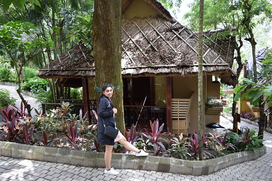 Club Mahindra Thekkady: Beautiful Cottages with a jungle feel
