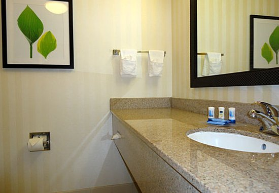 Archdale, Carolina del Norte: Suite Bathroom