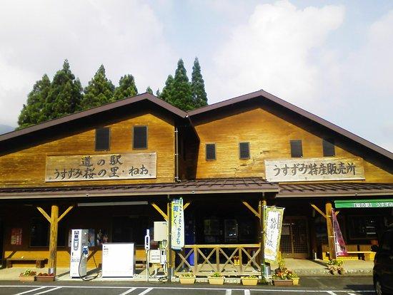 Michi-no-Eki -Usuzumi Village of Cherry Tree , Neo
