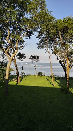 The Baywood Bed and Breakfast: View on the bay