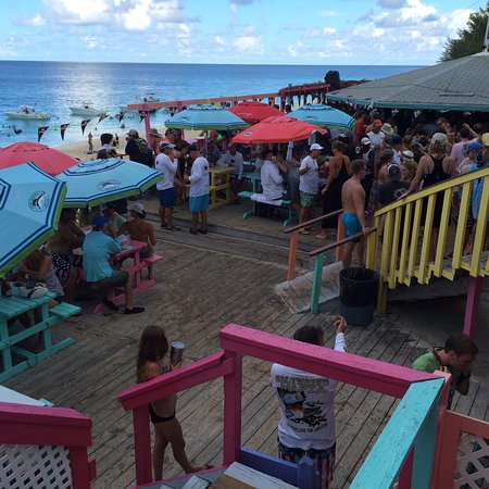 Грейт-Гуана-Кей: Taken on the Sunday afternoon at nippers...  Their rum punches are great!!'