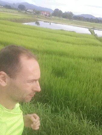 Bueng Pai Farm: 20160719_172519_large.jpg