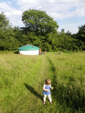 Tregaron, UK: IMG_20160719_182201_large.jpg