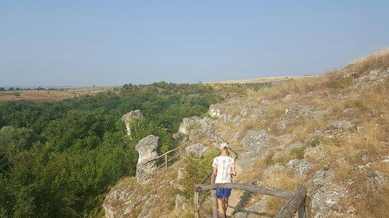 Lukovit, Bulgaria: 20160728_090058_large.jpg