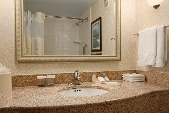 Ronkonkoma, نيويورك: Guest Room Bathroom