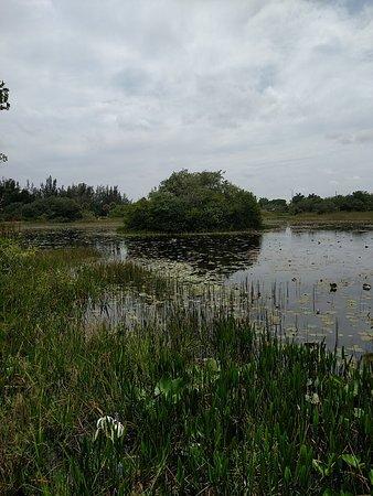 Davie, FL: Lake