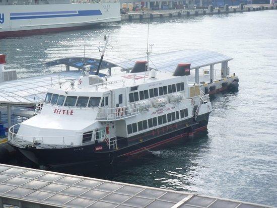 JR Kyushu Jet Ferry Beetle