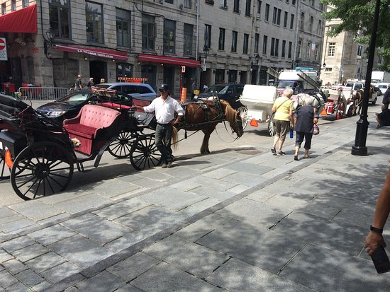 Old Montreal: photo9.jpg