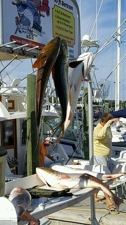 Strictly Business Fishing Charters Photo