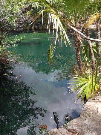 Cenote Crystal: Cenote Escondido