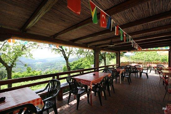 Terrazza - Picture of Bar Trattoria da Teresa, Cinto Euganeo ...