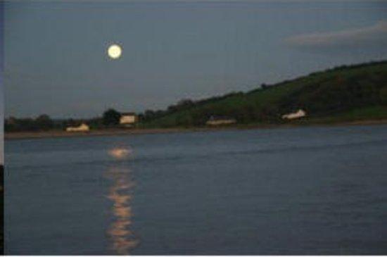 Youghal, İrlanda: Estuary