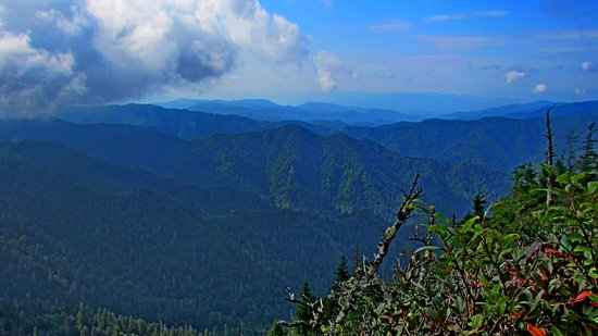 LeConte Lodge: Views are beautiful!