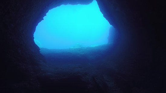 Omega Divers Chania Diving Center: Elepanth cave