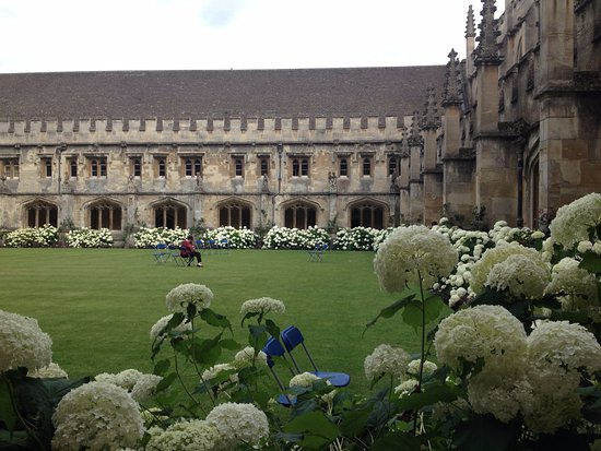 "Image result for ""magdalen college"" cloister"