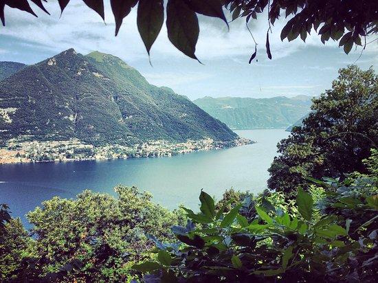 B&B Villa Le Ortensie: Uitzicht vanuit de kamer
