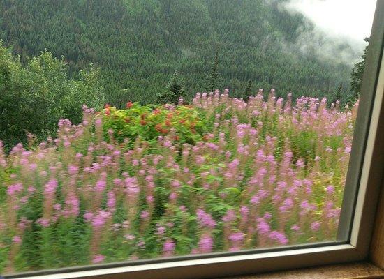 White Pass & Yukon Route Railway: IMAG0570_large.jpg