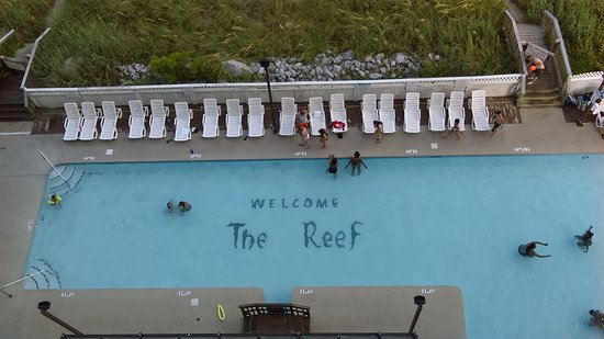 The Reef at South Beach Foto