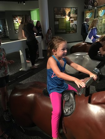 Kentucky Derby Museum: Racing the track