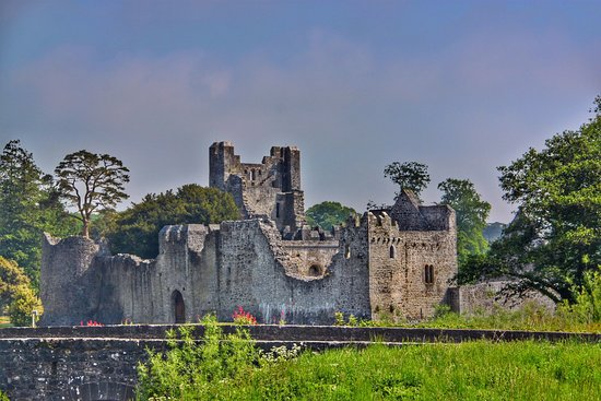 Fitzgerald's Woodlands House Hotel: Desmond Castle ruins nearby