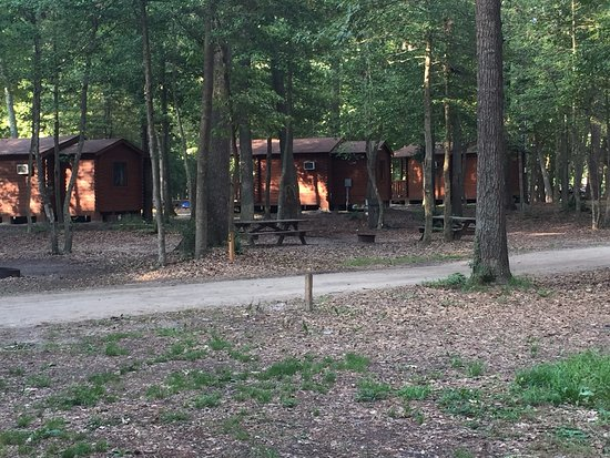 Holly Lake Camp Sites: cabins