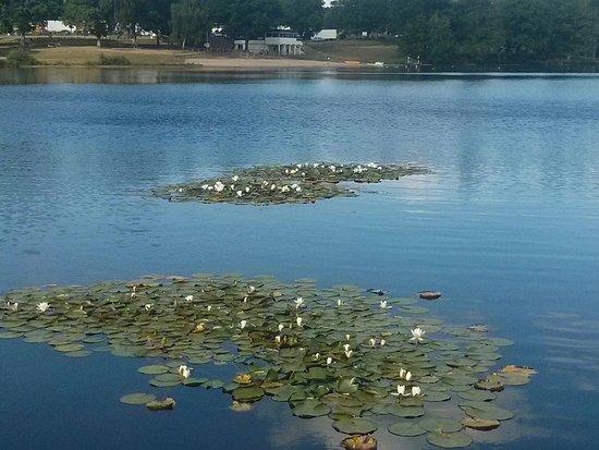 Lac de Ponty