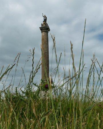 Γούντστοκ, UK: Victory Pillar