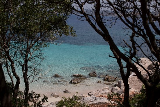 Methoni, اليونان: Trees and clear blue water