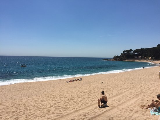 Apartaments Condado : Fenals Beach