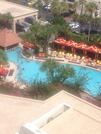 The San Luis Resort: photo0.jpg