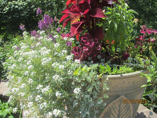 Somerset, NJ: Awesome pot arrangement