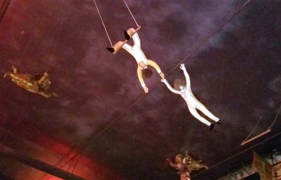 Fullerton, CA: trapeze