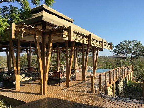 Частный заповедник Тимбавати, Южная Африка: Pool Deck