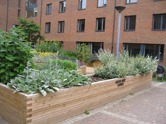 Stay QM: The courtyard garden in Beaumont House