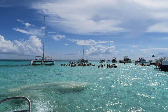 George Town, Grand Cayman: Stingray City Sandbar (other tour boats)