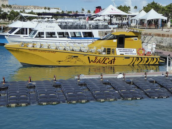 Sandys Parish, Bermuda: Wildcat tour boat. Fast but not wet