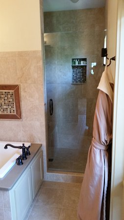 Sautee Nacoochee, GA: Shower - probably holds 4 people - in Mountain SUITE