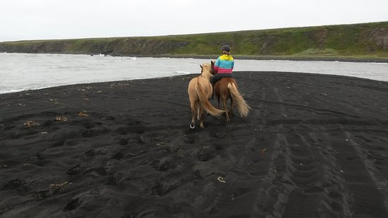 Saudarkrokur, Islandia: Terrific time at the beach!