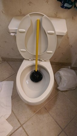Hampton Inn Dulles-Cascades: They left a plunger outside my room to fix the bathroom where Im staying at.