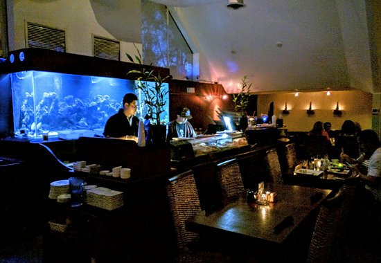 Wilton Manors, FL: Our Sushi Chef Making Magic At Our Sushi Bar!