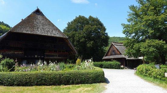 Gutach im Schwarzwald, ألمانيا: 20160726_134732_large.jpg